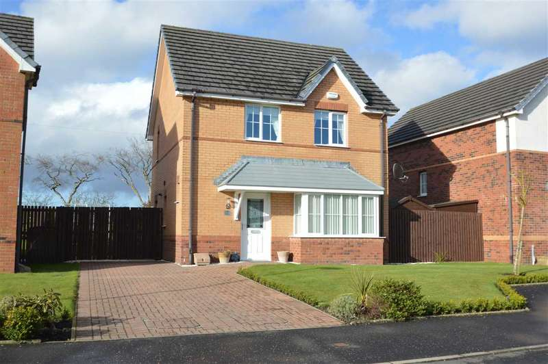 3 Bedrooms Detached House for sale in Rodger Way, Cleland
