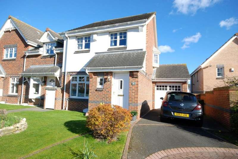 3 Bedrooms Semi Detached House for sale in Goalmouth Close, Roker