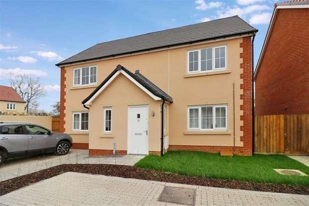 2 Bedrooms Flat for sale in Church Lane, Baltonsborough, Glastonbury