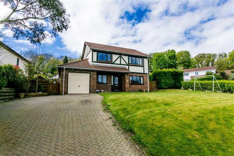 4 Bedrooms Detached House for sale in Farmhill Park, Douglas