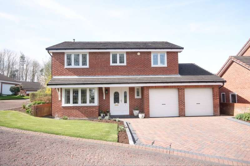 4 Bedrooms Detached House for sale in Dentdale, Mount Pleasant, DH4