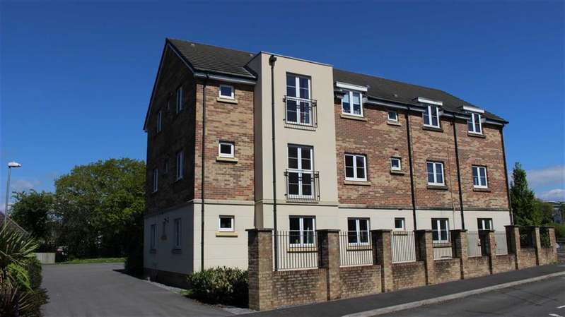 2 Bedrooms Flat for sale in Gelli Rhedyn, Fforestfach