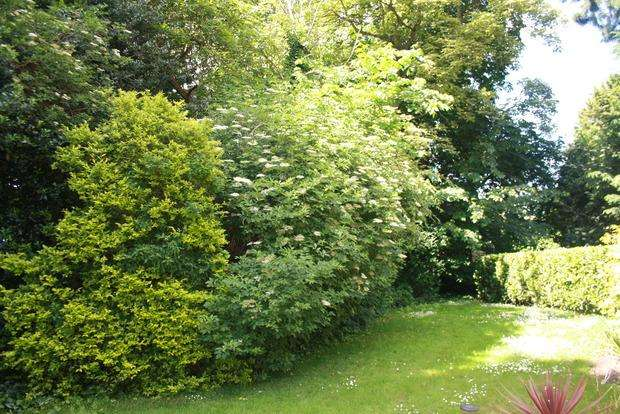 2 Bedrooms Plot Commercial for sale in The Walnuts, March, Cambs, PE15