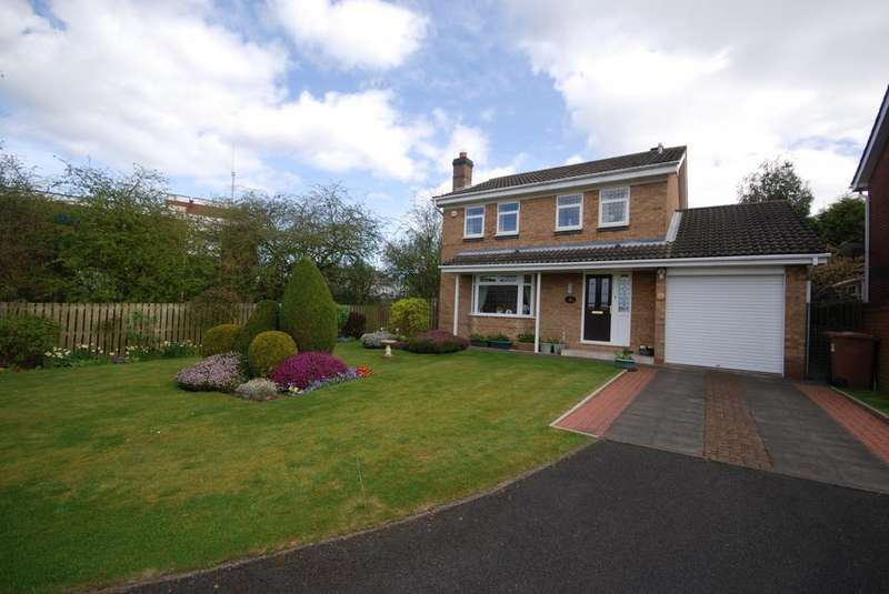 4 Bedrooms Detached House for sale in Hartside Gardens, Easington Lane