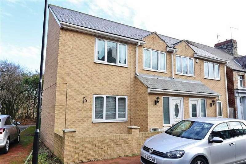 3 Bedrooms Semi Detached House for sale in Bishopton Street, Hendon, Sunderland, SR2