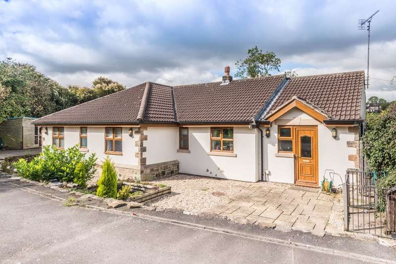 3 Bedrooms Detached Bungalow for sale in Plumbley Lane, Mosborough