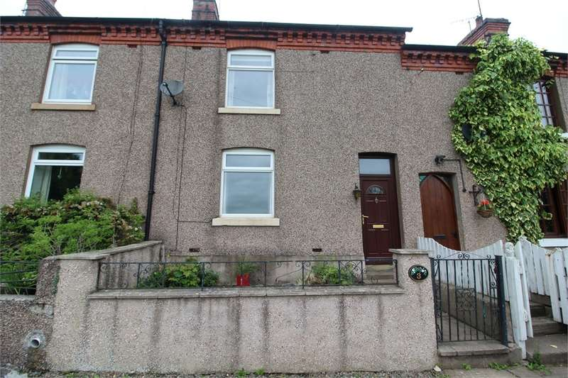 3 Bedrooms Terraced House for sale in CA11 9QZ Inglewood Terrace, Calthwaite, Penrith, Cumbria