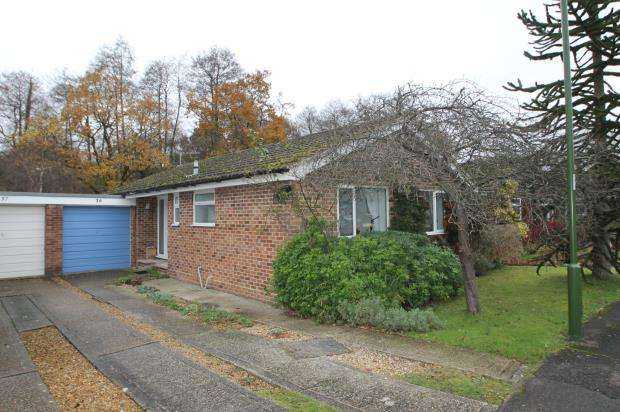 3 Bedrooms Bungalow for sale in Midhurst, West Sussex