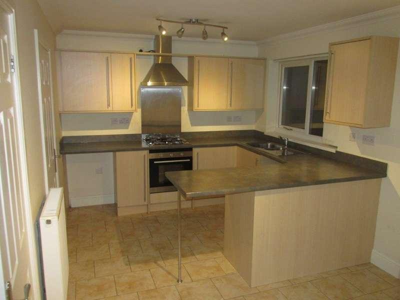 3 Bedrooms Semi Detached House for rent in Cwrt Y Dderwen, LLANELLI