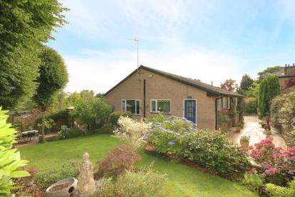 3 Bedrooms Bungalow for sale in Chelsea Road, Sheffield, South Yorkshire