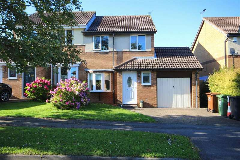 3 Bedrooms Semi Detached House for sale in Hayston Road, Deer Park, Hartlepool