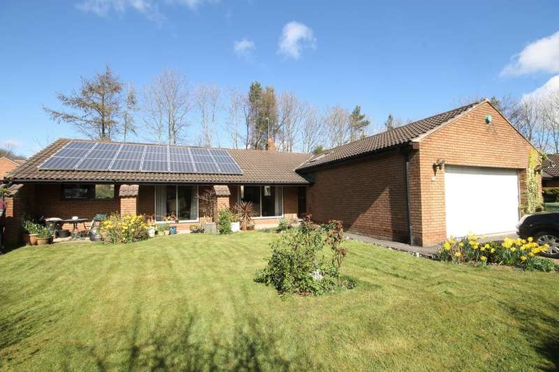 3 Bedrooms Detached Bungalow for sale in Forest Drive, Washington, NE38