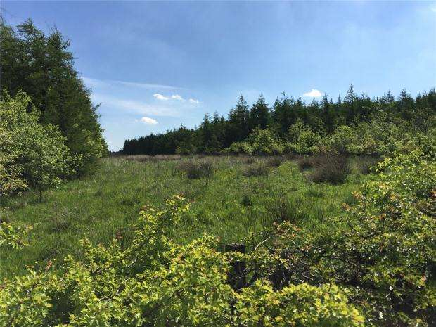 Land Commercial for sale in Drumtassie, Armadale, West Lothian