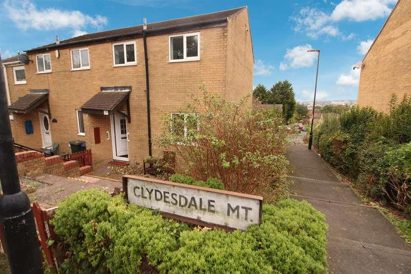 2 Bedrooms Semi Detached House for sale in Clydesdale Mount, Byker, Newcastle Upon Tyne