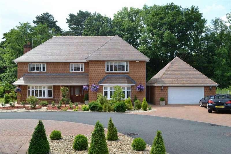 5 Bedrooms Detached House for sale in Pant Y Deri, Swansea