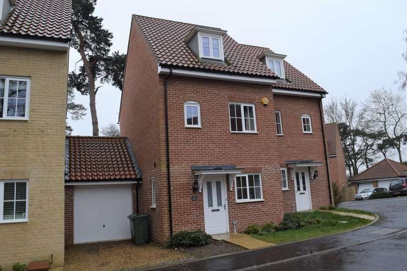 3 Bedrooms Semi Detached House for sale in Hastings Close, Thetford