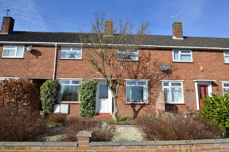 3 Bedrooms Terraced House for sale in Hall Road, Norwich