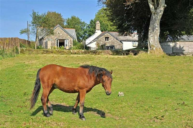 5 Bedrooms Detached House for sale in Widecombe-in-the-Moor, Devon, TQ13