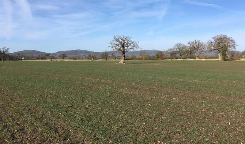 Land Commercial for sale in Birtsmorton, Malvern, Worcestershire, WR13