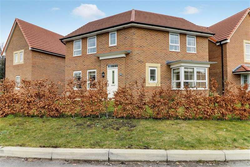 3 Bedrooms Detached House for sale in Rimmer Grove, Elworth, Sandbach