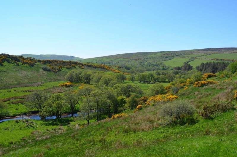 4 Bedrooms Farm Commercial for sale in Glenkerran, Southend, Campbeltown, Argyll and Bute, PA28