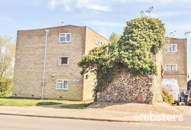 2 Bedrooms Ground Flat for sale in Ber Street, Norwich NR1