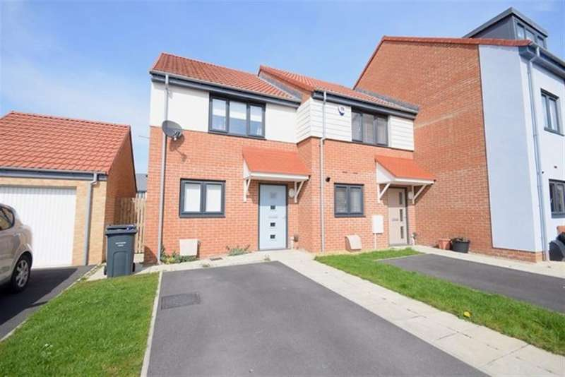 2 Bedrooms Semi Detached House for rent in Palace Close, South Shields