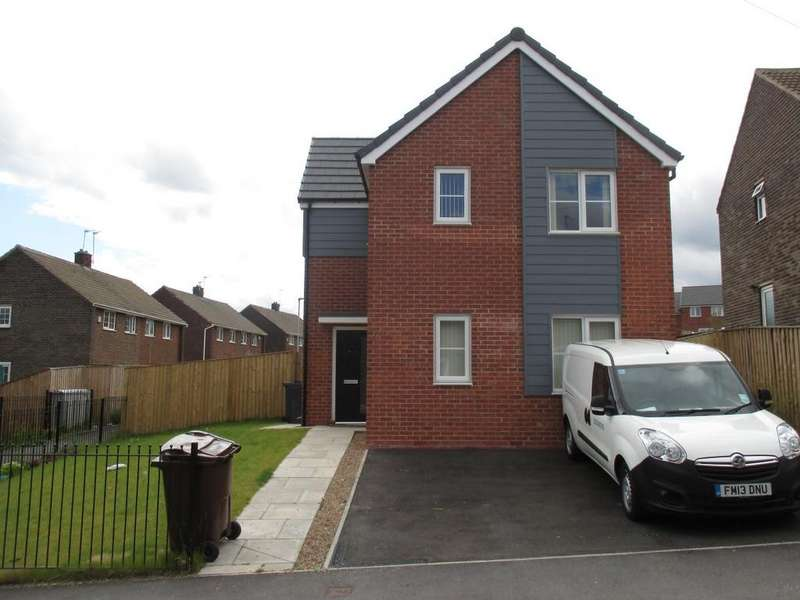 3 Bedrooms Detached House for rent in Larch Place, Kendray
