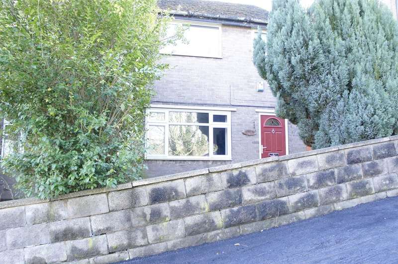 3 Bedrooms Semi Detached House for sale in Wellfield Road , Crookesmoor, Sheffield, S6 3GF