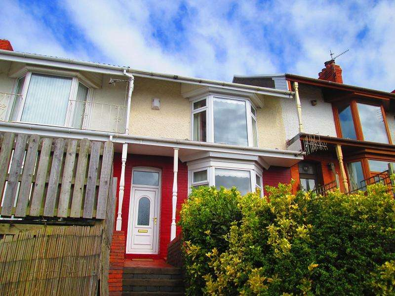 3 Bedrooms Terraced House for sale in Chaddesley Terrace, Swansea, City And County of Swansea.