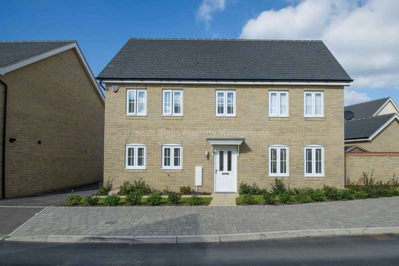 4 Bedrooms Detached House for rent in Waterland, St. Neots
