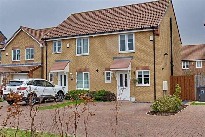 2 Bedrooms Semi Detached House for sale in Douglas Street, Longlands