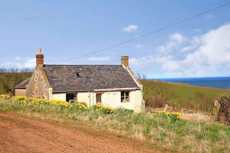 Land Commercial for sale in Whistleberry Cottage, Kinneff, Aberdeenshire