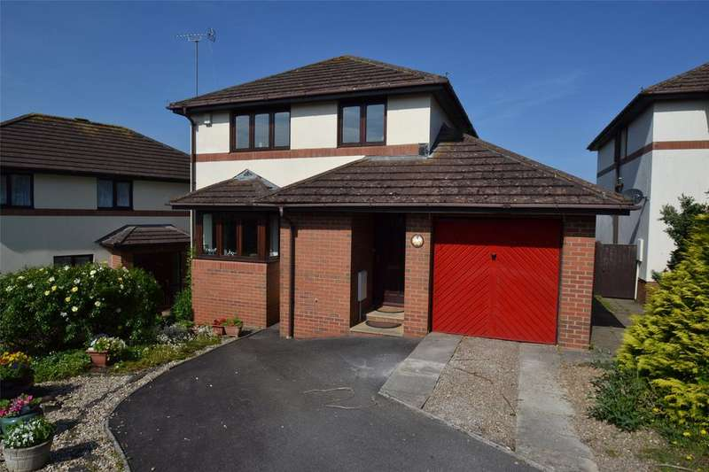 3 Bedrooms Detached House for sale in Currington Meadow, Bickington