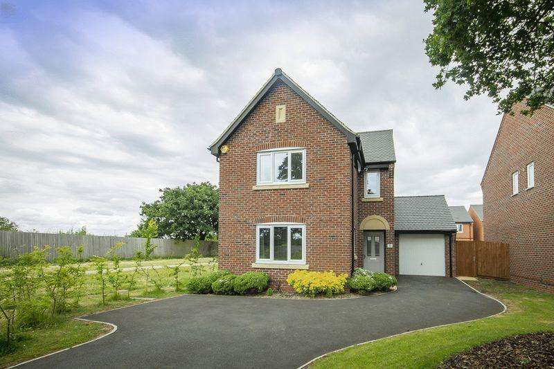 4 Bedrooms Detached House for sale in CARLINE COURT, STENSON FIELDS