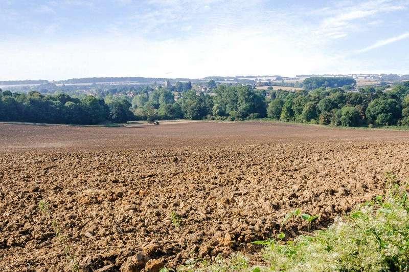 Farm Commercial for sale in Shortgrove Farm, Newport, Saffron Walden, Essex, CB11