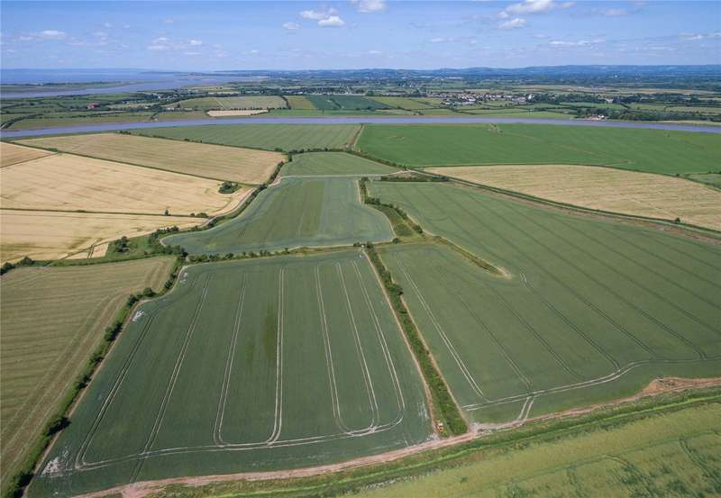 Land Commercial for sale in Chilton Trinity, Bridgwater, Somerset, TA5