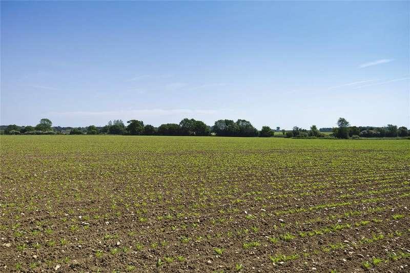 Farm Commercial for sale in Grange Farm - Lot 2, Woolpit, Bury St. Edmunds, Suffolk, IP30