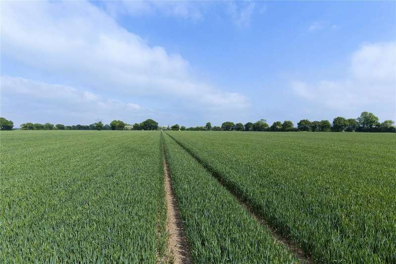 Farm Commercial for sale in Rookery Farm - Lot 3, Wilby, Eye, Suffolk, IP21