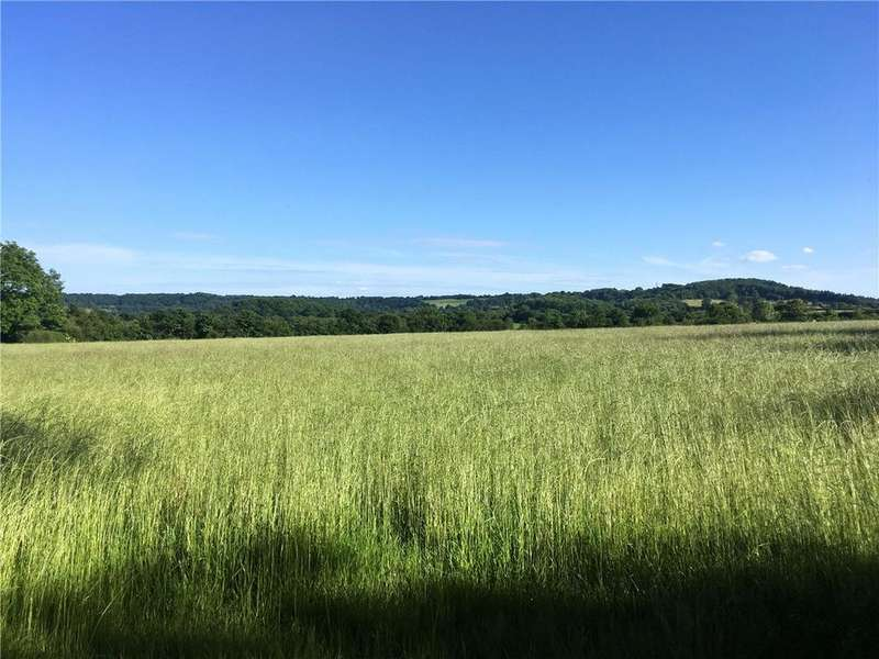 Land Commercial for sale in Sedgehill, Shaftesbury, Wiltshire, SP7