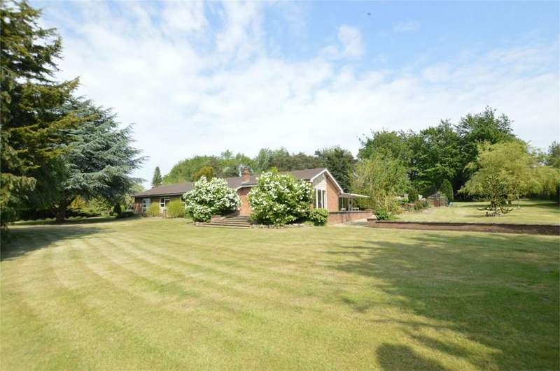 4 Bedrooms Detached Bungalow for sale in Norwich Road, Caistor St Edmund, Norwich