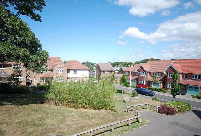 4 Bedrooms Detached House for sale in Hughes Gardens, Bideford
