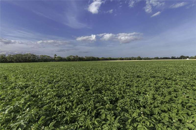 Farm Commercial for sale in Lot 2 - Land at Finavon, Forfar, Angus, DD8