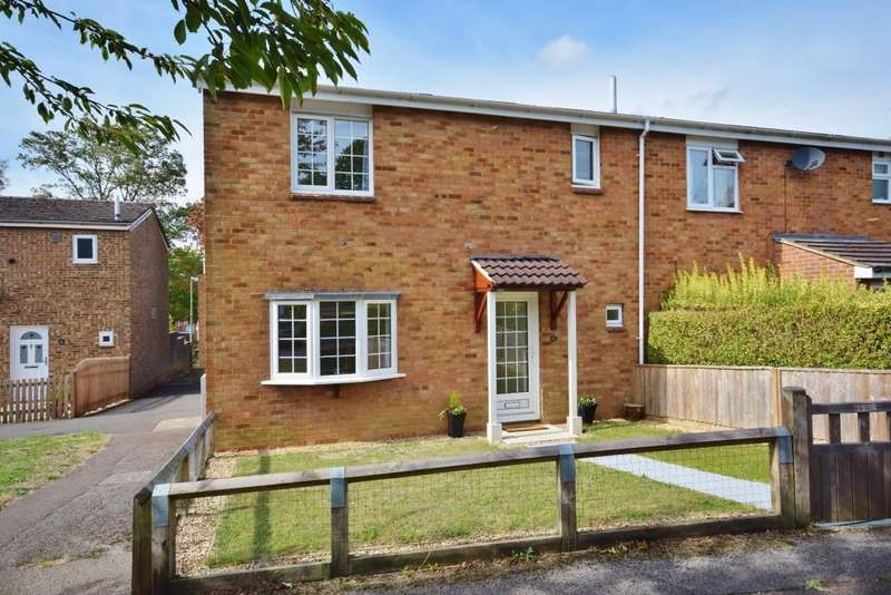 3 Bedrooms End Of Terrace House for sale in Black Dam, Basingstoke, RG21