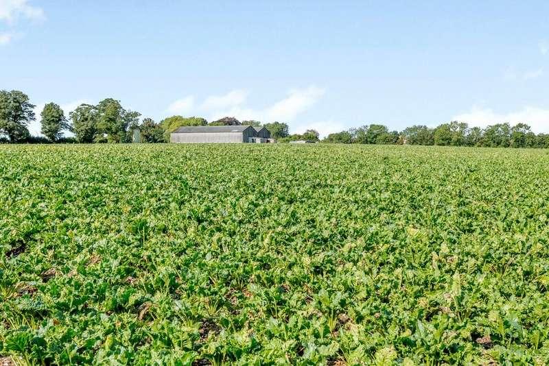 Farm Commercial for sale in Grange Farm - Lot 1B, Highgate Lane, Wood Enderby, Lincolnshire, PE22
