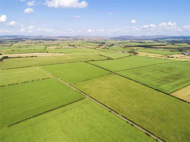 Farm Commercial for sale in Evertown Portfolio, Canonbie, Dumfriesshire, DG14