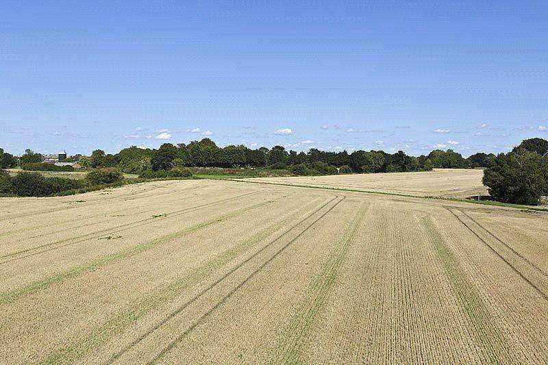 Land Commercial for sale in Bucks Green, Bedingfield, Eye, Suffolk