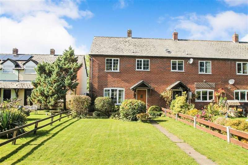 3 Bedrooms End Of Terrace House for sale in Redlake Meadow, Bucknell, Craven Arms