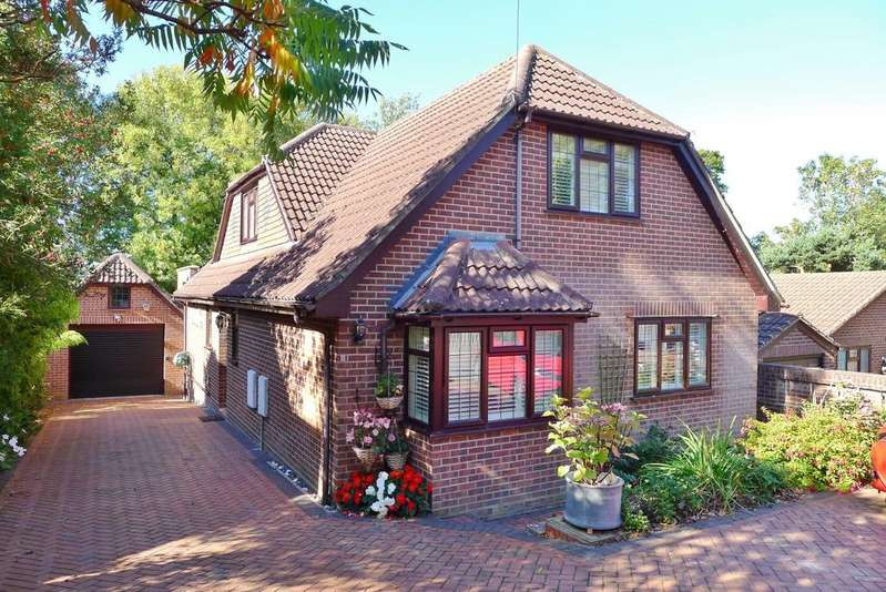 4 Bedrooms Detached House for sale in CATISFIELD