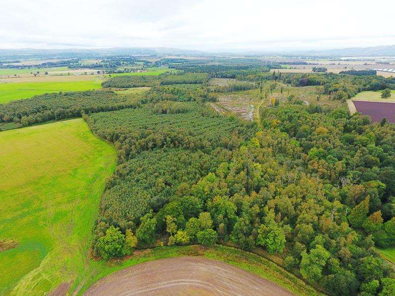 Land Commercial for sale in Dunmore Woods, Airth, Stirlingshire FK2